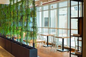 Work by staying in touch with the nature at Nest